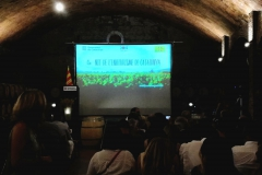 4 Nit de l'Enoturisme de Catalunya - Vinya els Vilars - 05