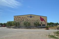Vinya els Vilars murals art i vi Arbeca DO Costers del Segre - 10 de 28
