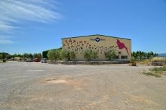 Vinya els Vilars murals art i vi Arbeca DO Costers del Segre - 17 de 28