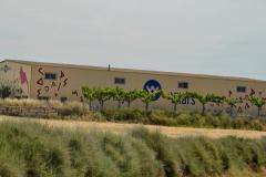Vinya els Vilars murals art i vi Arbeca DO Costers del Segre - 4 de 28
