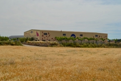 Vinya els Vilars murals art i vi Arbeca DO Costers del Segre - 9 de 28