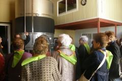 La gent gran de la Granadella de visita al celler 2013