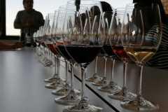 Tast-Premium-Vinya-els-Vilars-DO-Costers-del-Segre-1