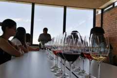 Tast-Premium-Vinya-els-Vilars-DO-Costers-del-Segre-7