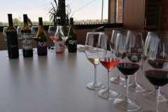 Tast-Premium-Vinya-els-Vilars-DO-Costers-del-Segre-8-