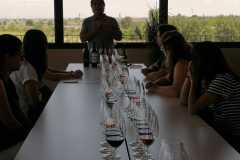 Tast-Premium-Vinya-els-Vilars-DO-Costers-del-Segre