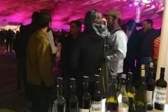 Vi de Lleida Festa Costers Segre Vinya els Vilars - 01