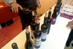 Vi de Lleida Festa Costers Segre Vinya els Vilars - 16