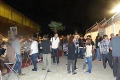 Festa del Vi de Lleida 2013