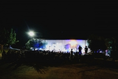 Vinya els Vilars - Vi Costers del Segre- Garrigues Guitar Festival 2018 - 2