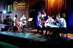 Vinya els Vilars - Vi Costers del Segre- Garrigues Guitar Festival 2018 - 4