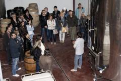 AMPA-INS-Ronda-visita-Vinya-els-Vilars-1