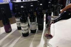 Costers del Segre Mostra de vins Barcelona Vinya els Vilars 12
