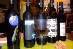 Vinya-els-Vilars-Vinicia-9