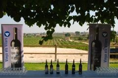 Celler Vinya els Vilars-visita PSC 2