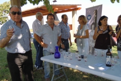 Celler Vinya els Vilars-visita PSC 41