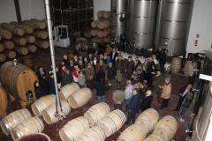 Celler-Vinya-els-Vilars-Arbeca-visita-somenten-terres-de-Lleida-12