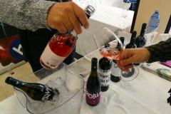 Vinalia Vins Costers Segre Vinya els Vilars - 09