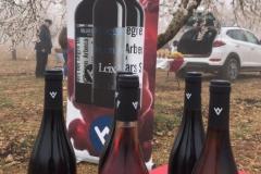 Vinya els Vilars Vermouth entre flors Arbeca - 1 de 25