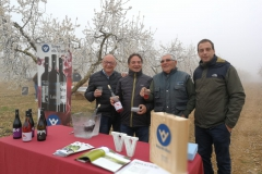 Vinya els Vilars Vermouth entre flors Arbeca - 12 de 25