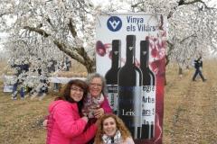 Vinya els Vilars Vermouth entre flors Arbeca - 15 de 25