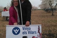 Vinya els Vilars Vermouth entre flors Arbeca - 22 de 25