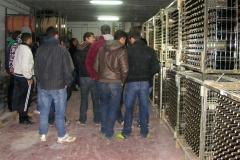 Visita Escola Capacitació Agrària de les Borges Blanques 2013