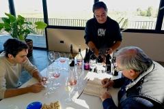 Vino Costers del Segre Vinya els Vilars re - 3