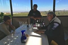 Vino Costers del Segre Vinya els Vilars re - 4